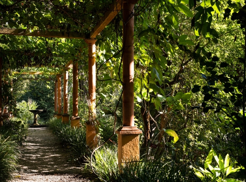 La pergola - Jardin botanique Val Rahmeh-Menton© MNHN - Agnès Iatzoura