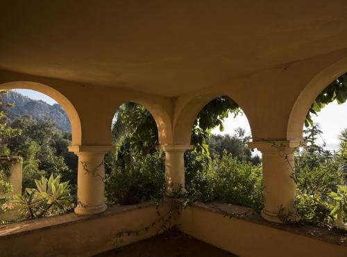 Vue du jardin botanique depuis la terrasse - Jardin botanique Val Rahmeh-Menton © MNHN - Agnès Iatzoura